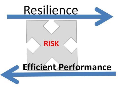 riskresilience